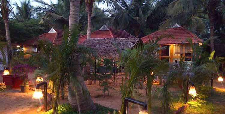 palm tree resort location yoga teacher training goa